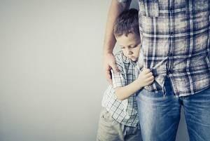 Illinios child custody laws, Illinois family law attorney